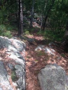 I love downhills!