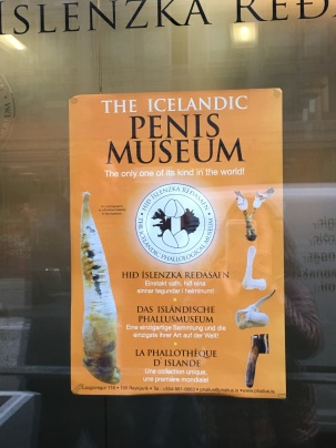The Icelandic Phallological Museum (aka Penis Museum) is right in front of Hlemmur Square.